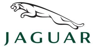 Wintonsworld Jaguar Car Reviews